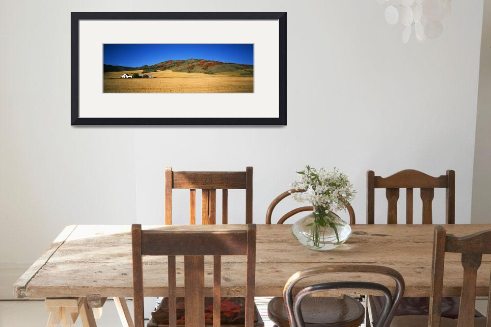 """Wheat ranch with farmhouse and dwarf mountain map&quot  by Panoramic_Images"