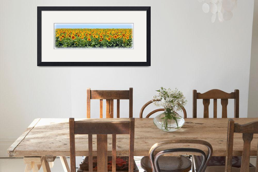 """Sunflower Fields Forever&quot  (2012) by bettynorthcutt"