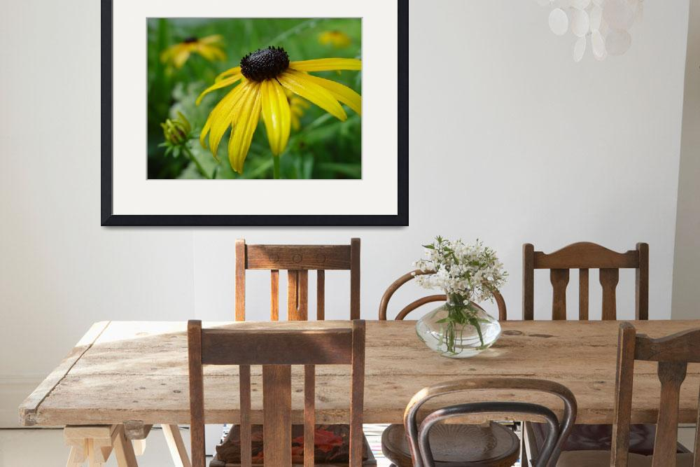 """Portrait of Black-eyed Susan&quot  (2010) by bleij50"