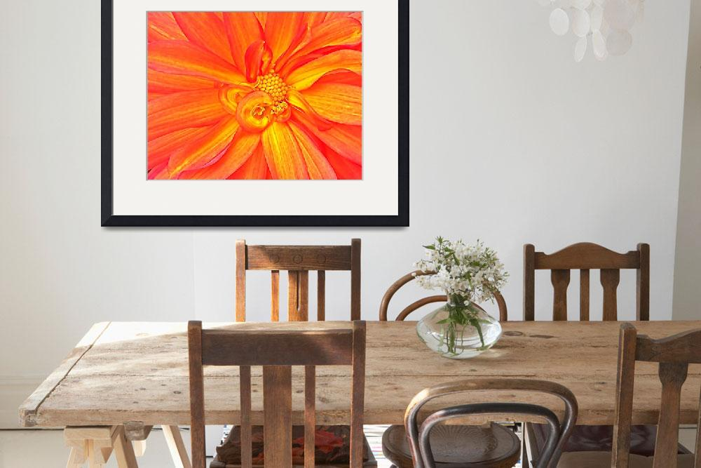 """Orange & Yellow Blossom II&quot  (2008) by trevortrent"