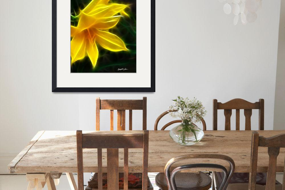 """Yellow Daylily 5 Flare&quot  (2009) by ChristopherInMexico"