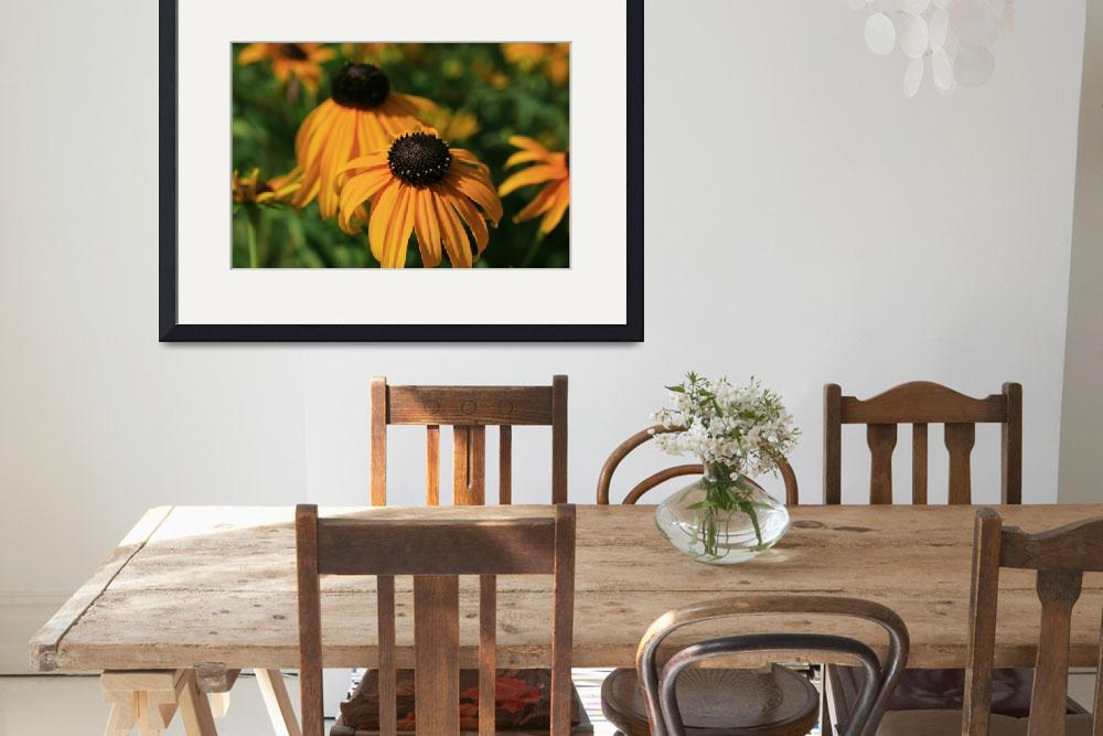 """Black Eyed Susans on a Lazy Summer Day&quot  (2012) by newimage"