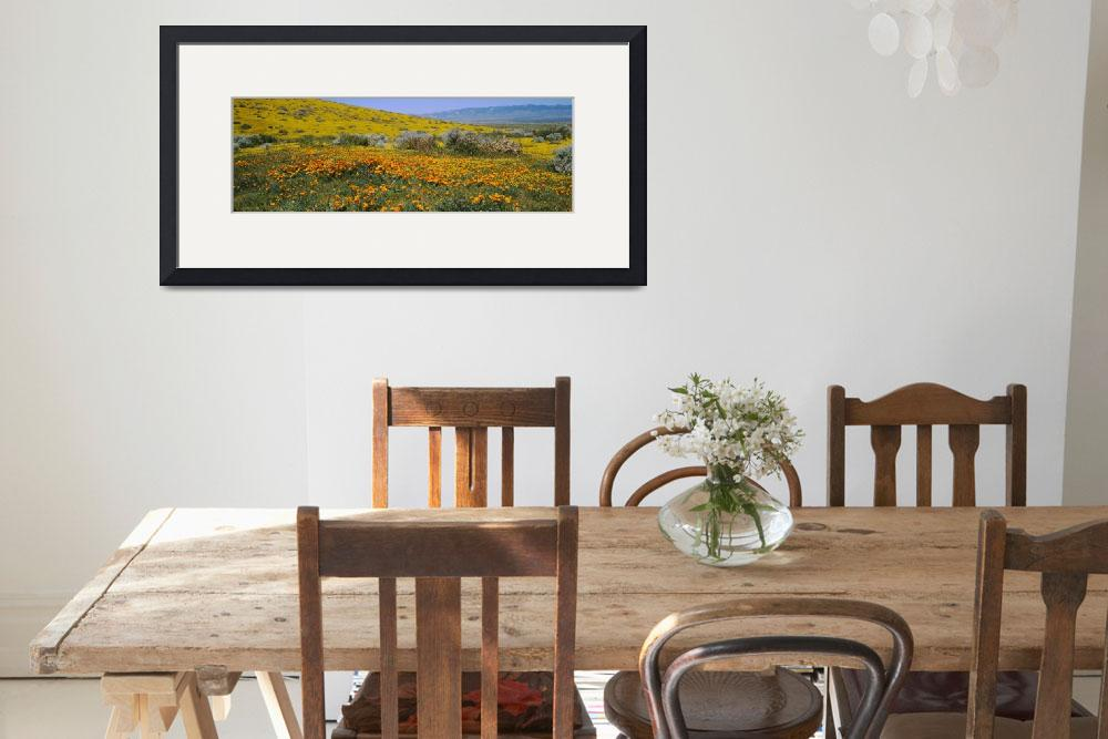 """Poppy Preserve, Antelope Valley, California&quot  by Panoramic_Images"
