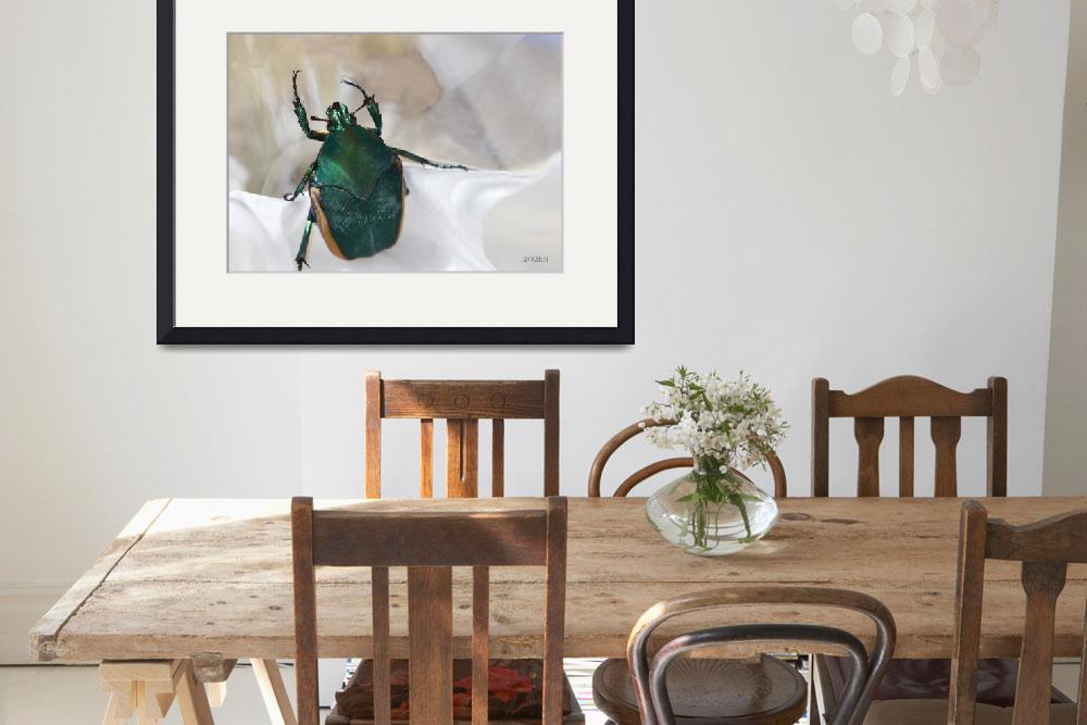 """Green Beetle with Reflection Issues&quot  (2012) by theblueplanet"