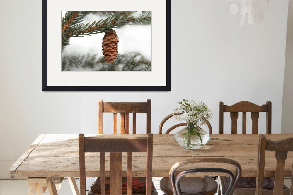 """Pine cone in Winter&quot  (2014) by patsphotos"