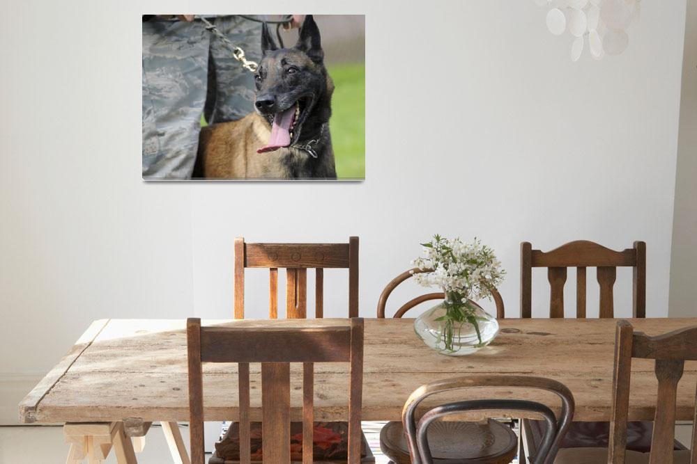 """Smiling Belgian Malinois Dog&quot  by Alleycatshirts"