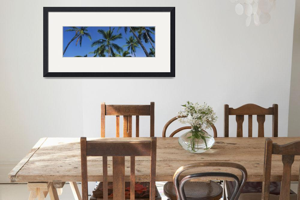 """Low angle view of palm trees&quot  by Panoramic_Images"