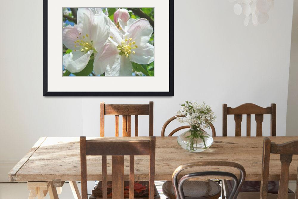 """Apple Blossoms Tree Flowers Art Prints Spring&quot  (2014) by BasleeTroutman"