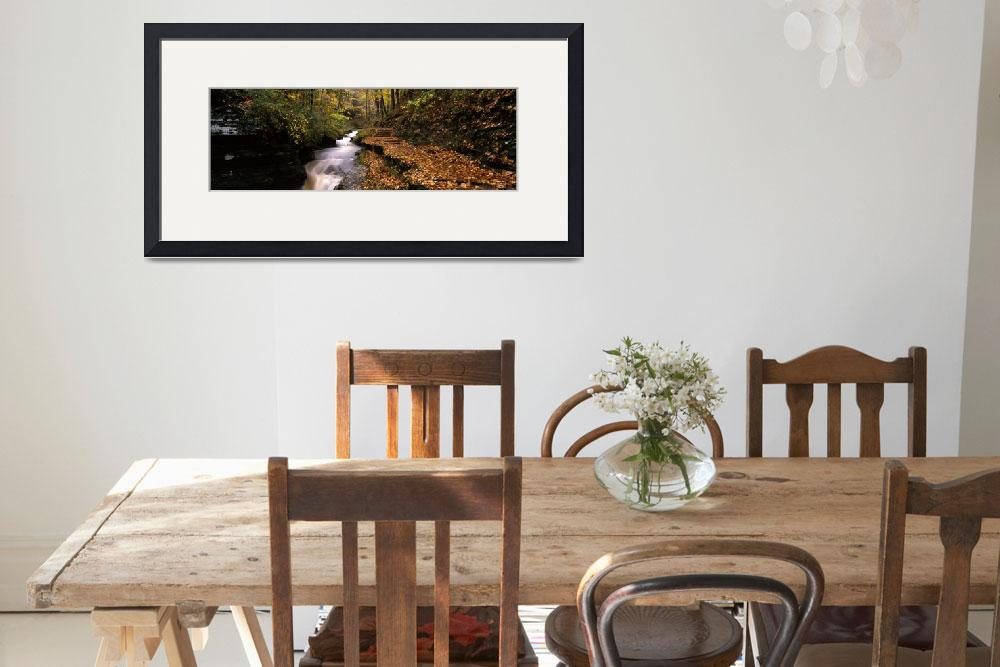 """Buttermilk Creek Ithaca NY&quot  by Panoramic_Images"
