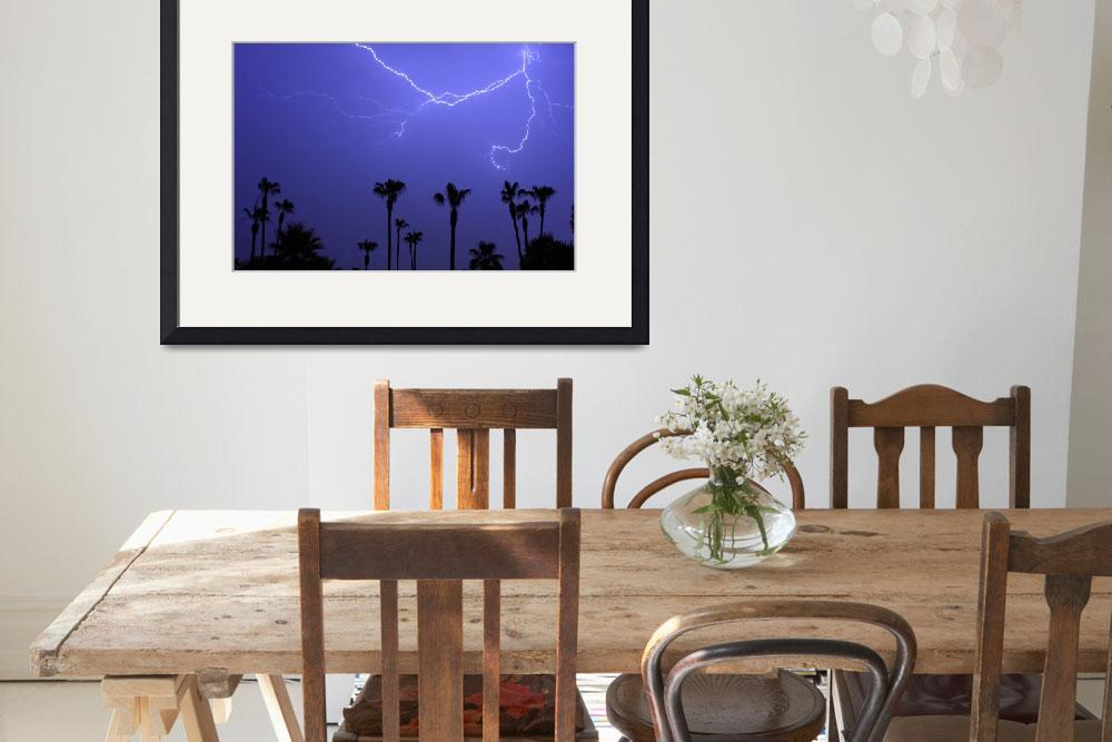 """13 Palms&quot  (2008) by lightningman"