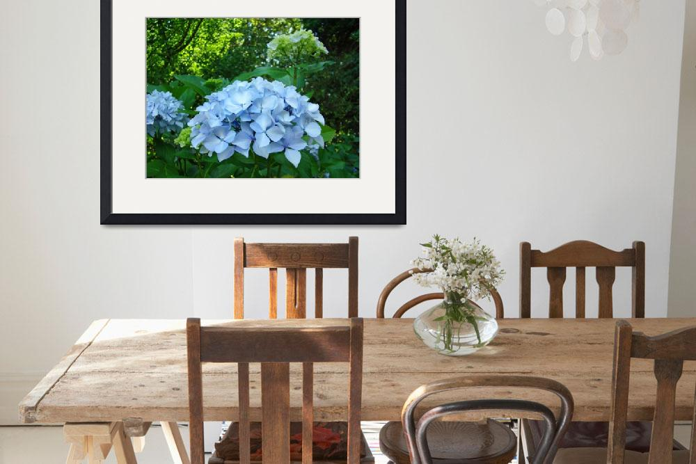 """BLUE Hydrangea FLOWERS Art Summer Blooms&quot  (2009) by BasleeTroutman"