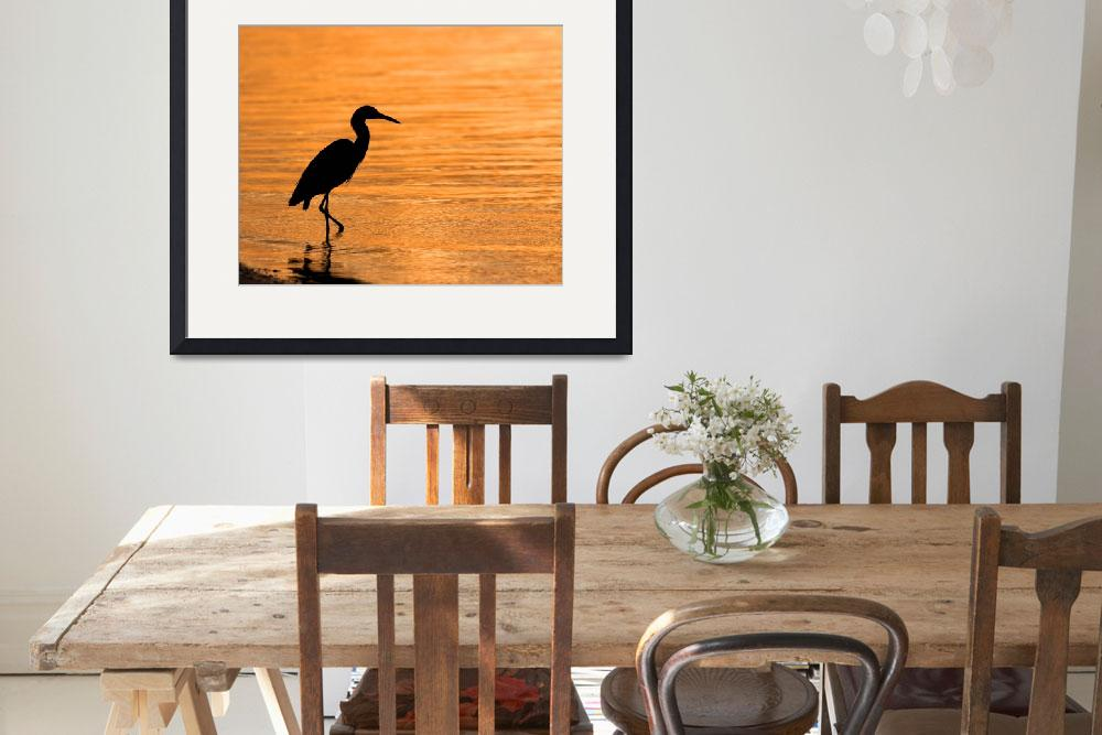 """heron at sunset&quot  by Bonniejoyanderson"
