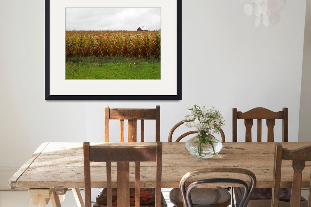 """Cornfield and Farmhouse&quot  (2009) by Ffooter"