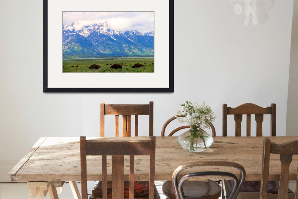 """Grand Teton WY Buffalo&quot  (2016) by Charmpri"