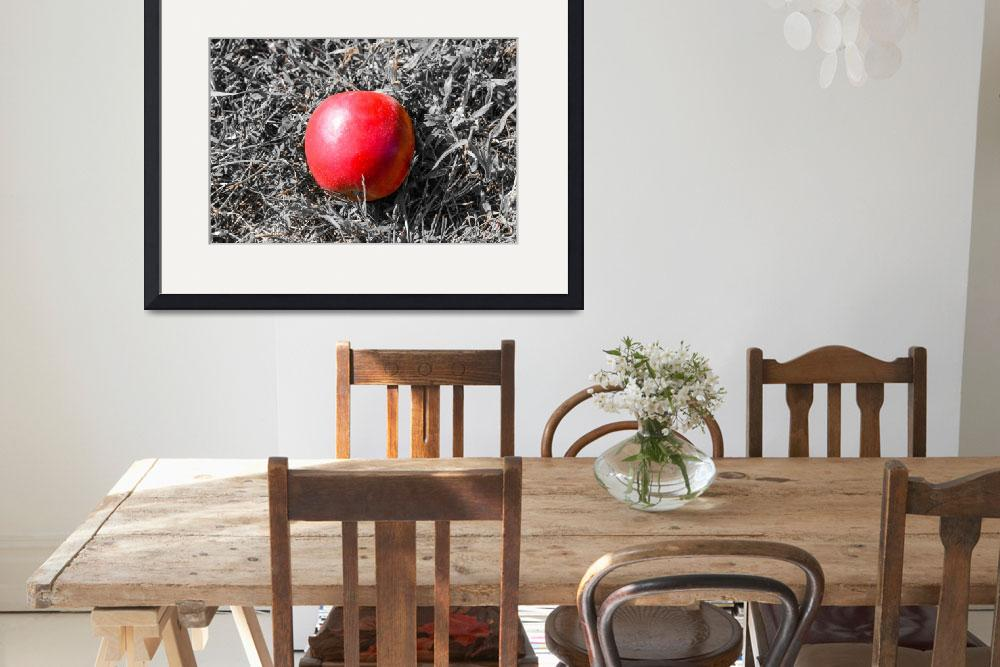 """Lone Apple&quot  (2014) by KrisJPhotography"