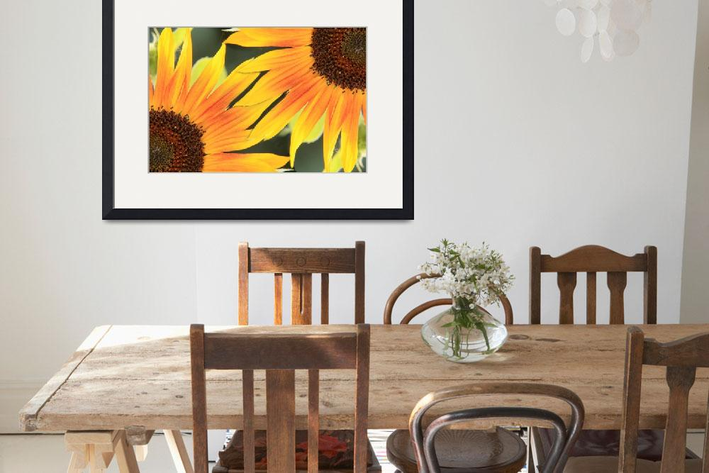 """Sunflower On the Corner&quot  (2010) by lightningman"