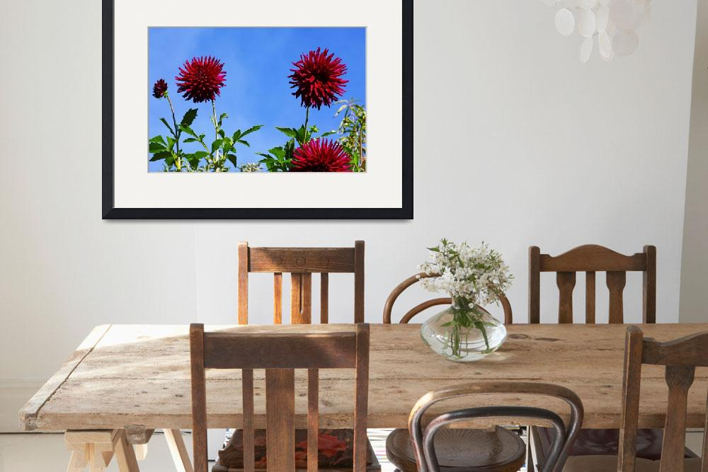"""Blue Sky Dahlia Flower Fine Art Prints Gifts&quot  (2016) by BasleeTroutman"