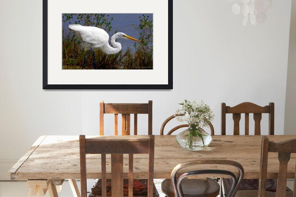 """""Portrait of a Great Egret""&quot  (2009) by ChrisCrowley"