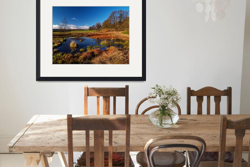 """Rocher Bog&quot  (2006) by roger"