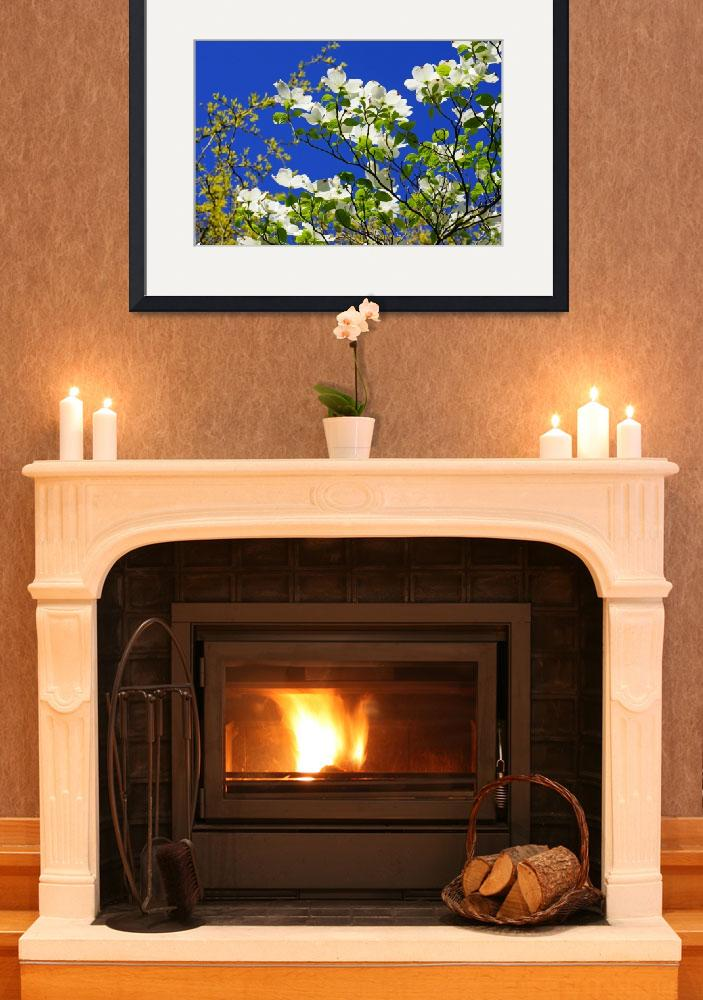 """Dogwood Flowers Tree Art Prints Blue Sky Garden&quot  (2014) by BasleeTroutman"