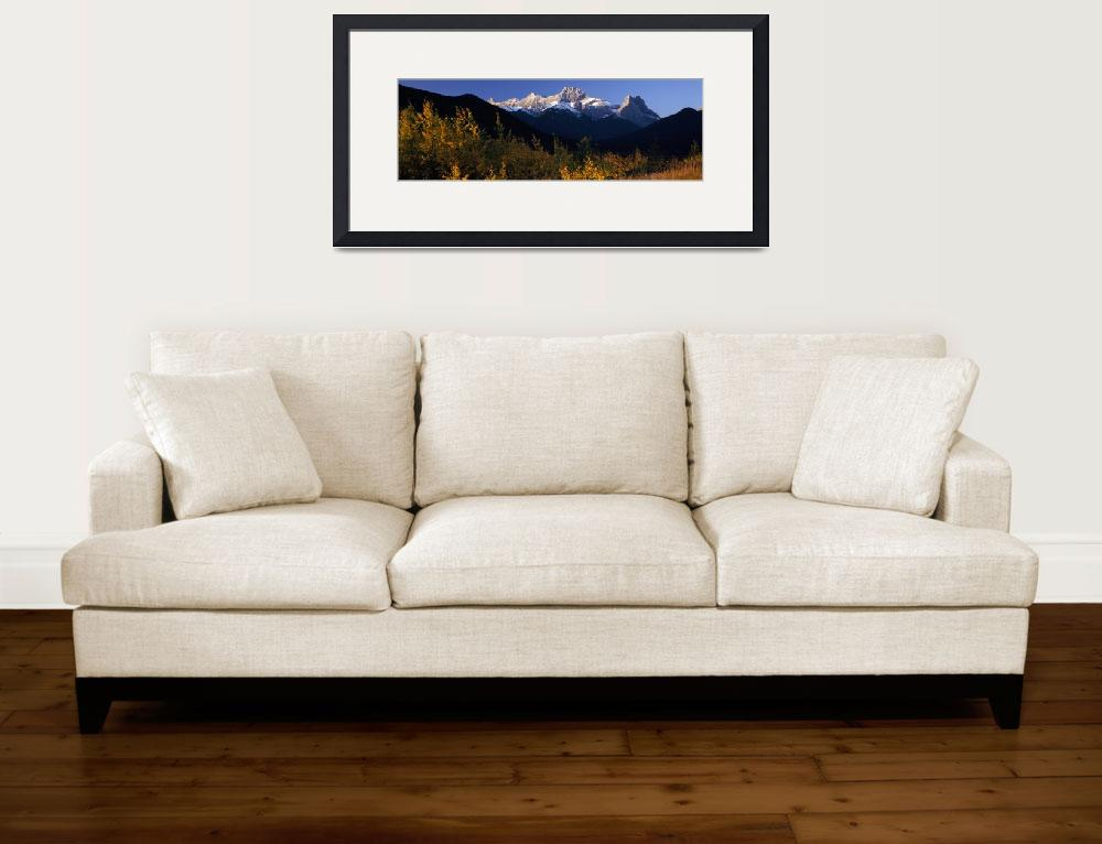 """Aspen trees with a mountain in the background&quot  by Panoramic_Images"