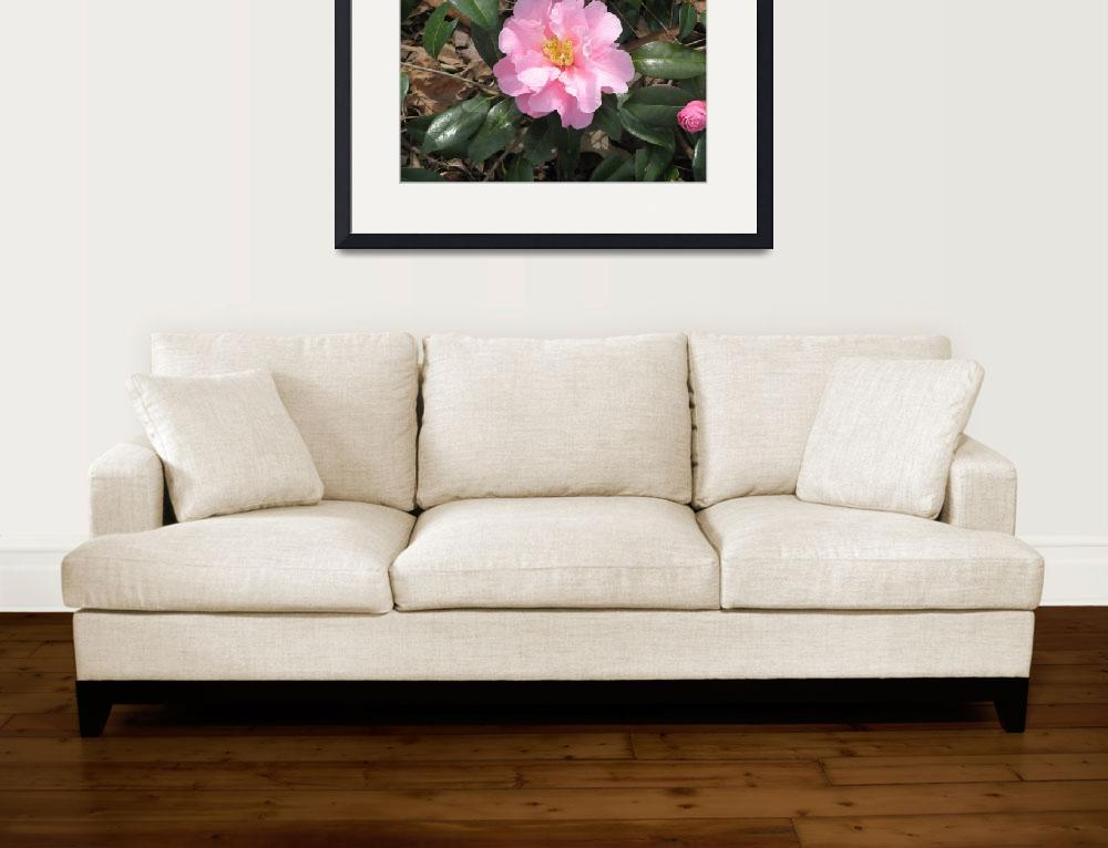 """Pink Flower&quot  (2010) by ValeriesGallery"