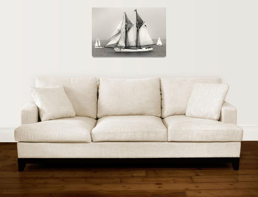 """Tall Ships Sailing&quot  (2009) by Black_White_Photos"