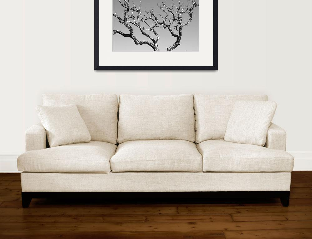 """Black and White Abstract Tree&quot  (2009) by lightningman"