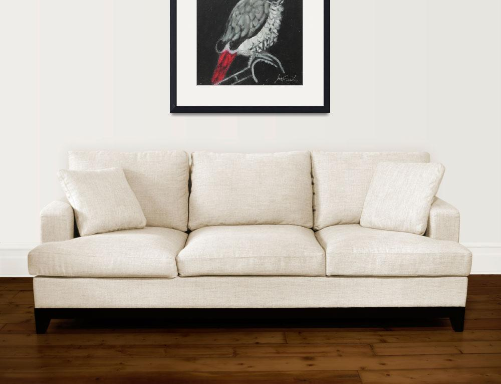 """African Grey&quot  by VisionaryPictures"