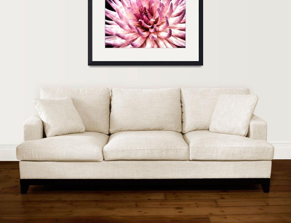"""Dahlia Art Print: ""Tangled Up In Pink""&quot  (2012) by SoulfulPhotos"