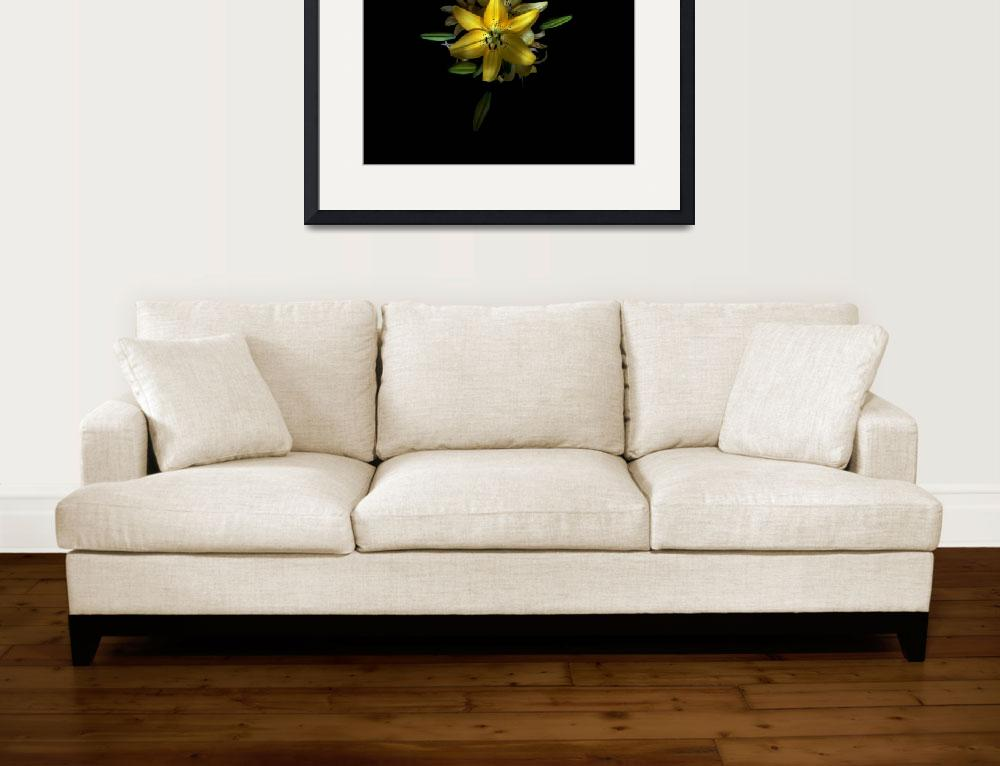 """yellow flower by school&quot  (2008) by TOMSHEA"