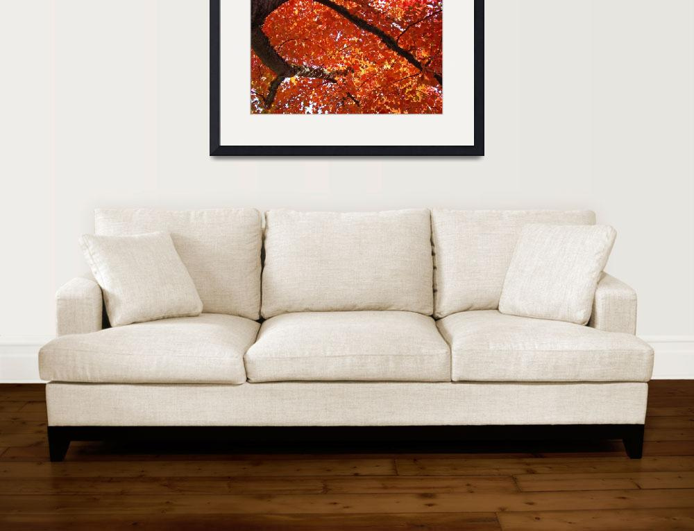 """AUTUMN TREES Art Fall Landscape Orange Red Leaves&quot  (2009) by BasleeTroutman"