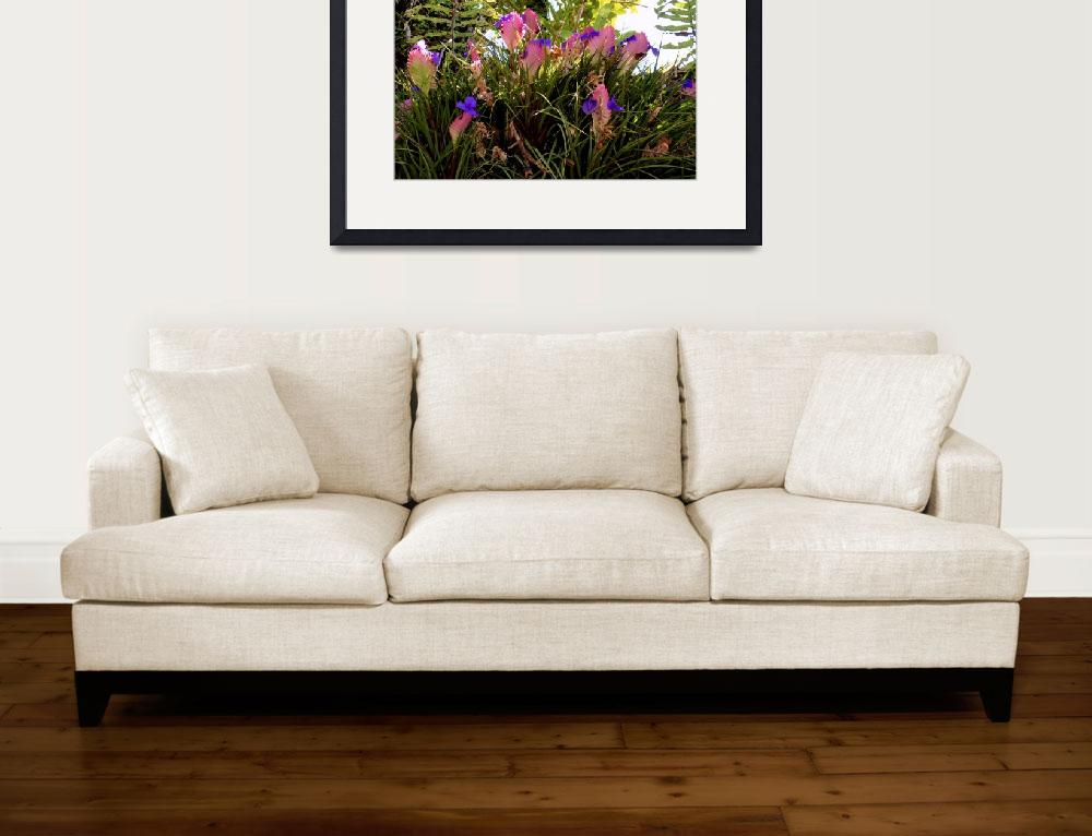 """Pink Quill Bromeliad&quot  (2011) by joeyartist"