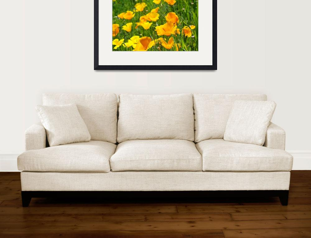 """Poppy Flower Green Summer Meadow Art Print&quot  (2014) by BasleeTroutman"