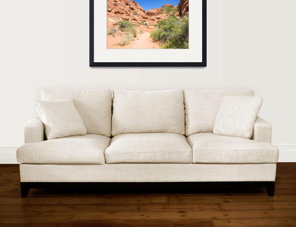 """Hiking Trail - Valley of Fire&quot  (2014) by AdrianFregoso"