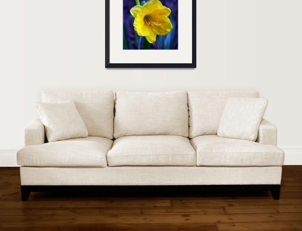 """Yellow Lily II&quot  (2011) by SandiOReilly"