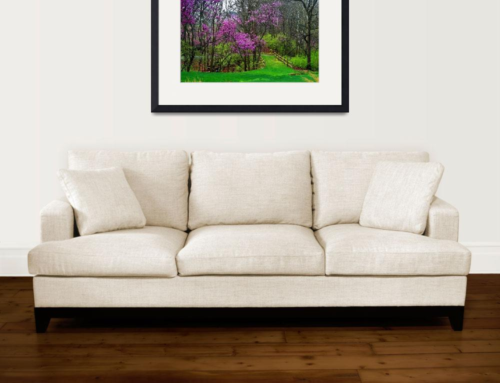 """Redbud Trees in Spring&quot  (2012) by KsWorldArt"
