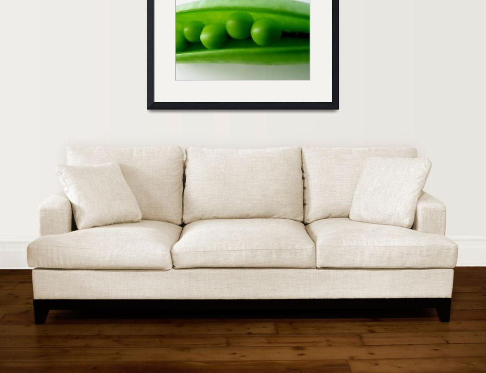 """Peas in a Pod&quot  (2008) by steveallatphoto"