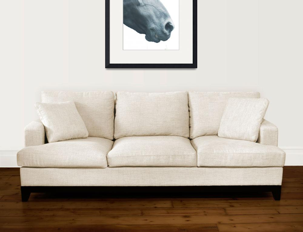 """Horse head, fine art print n°3, animal lovers&quot  (2016) by Illustrationstefano"