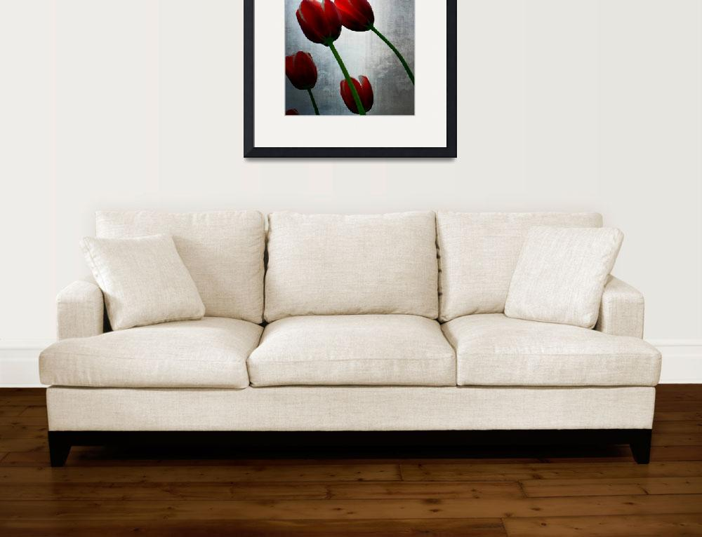 """Red Tulips and Grey Sky&quot  (2015) by Michelle1991"