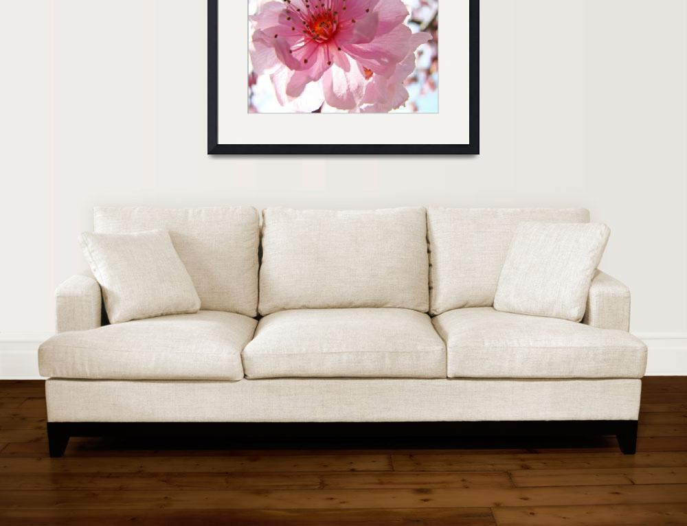 """Spring Tree Blossoms Pink Flowers Art Prints&quot  (2009) by BasleeTroutman"