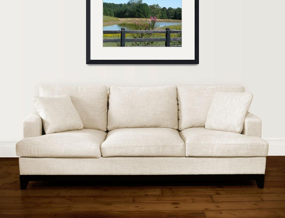 """Peaceful Country Living 1258&quot  (2011) by photographybydonna"