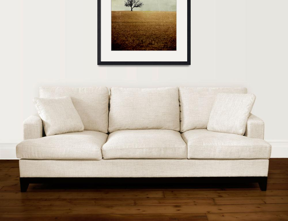 """Lone Tree (Square)&quot  (2009) by KPphotography"
