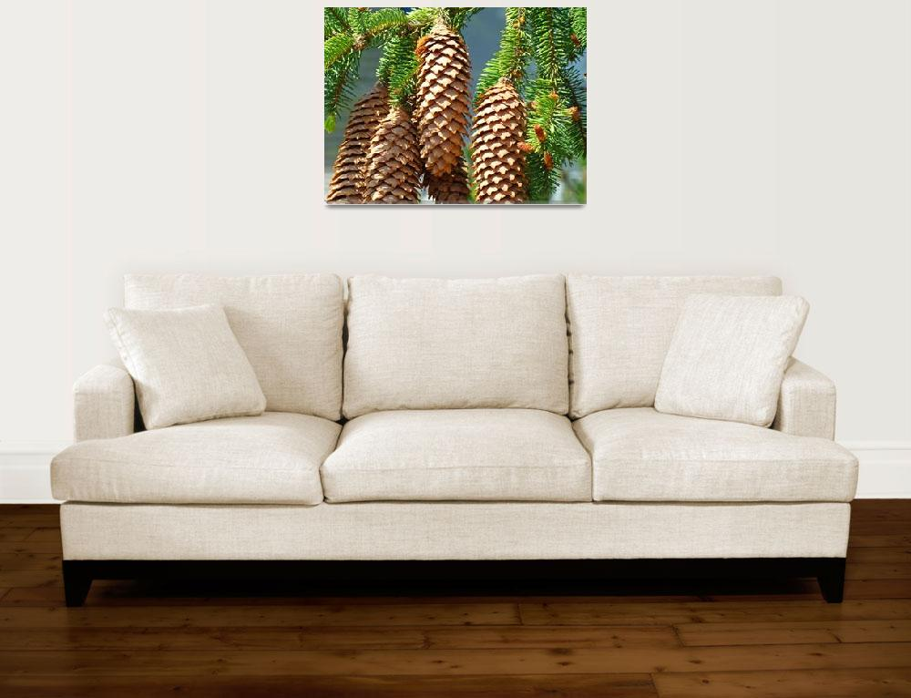 """Golden Pine Cones Art Prints Conifer Forest Baslee&quot  (2010) by BasleeTroutman"