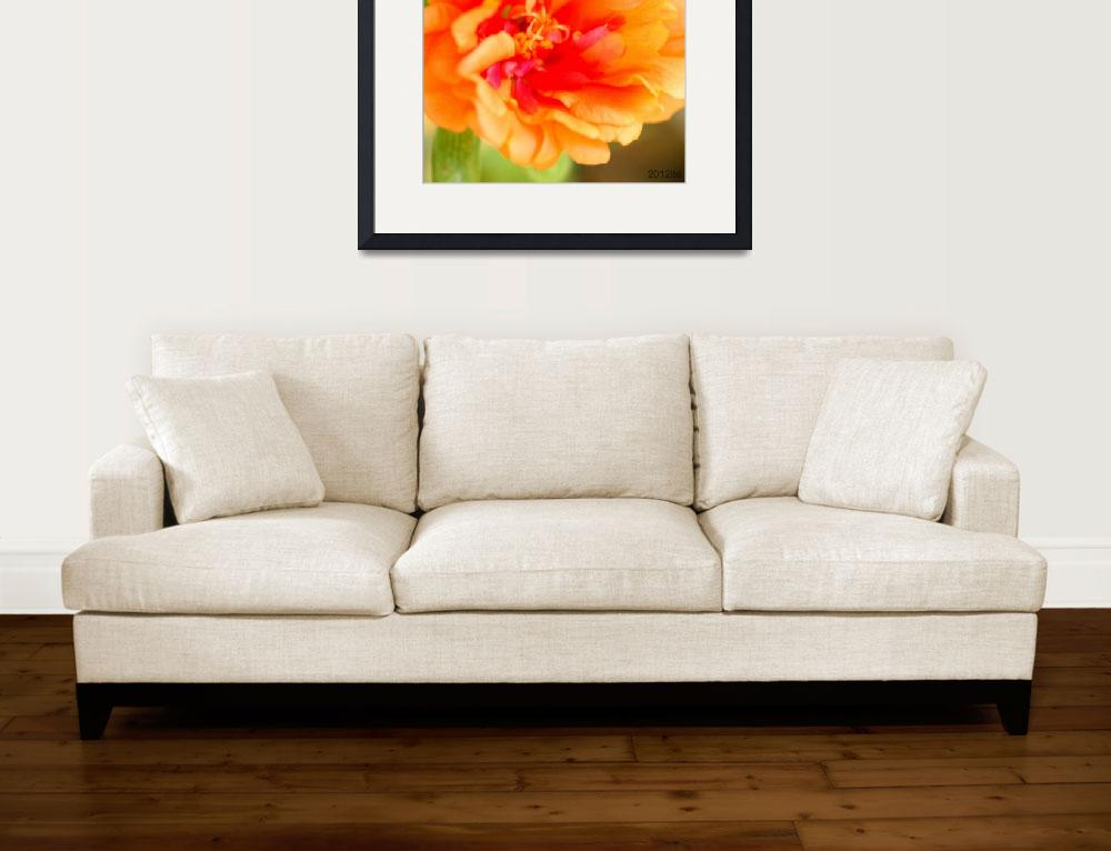"""Orange Portulaca Flower&quot  (2012) by lwunlimited"
