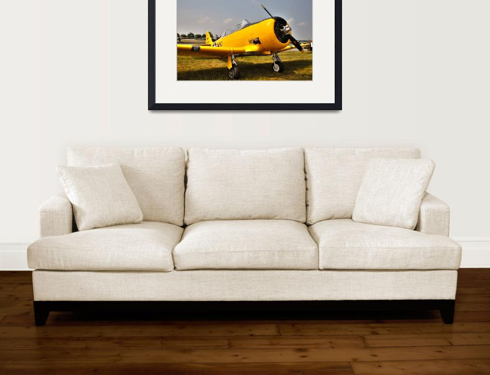 """T6 - Texan&quot  (2010) by Paul_Rumsey"