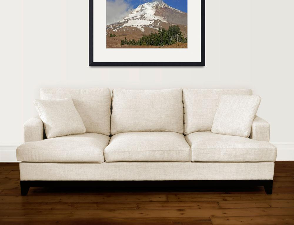"""Summer at Mt Hood&quot  (2011) by aRTPhotograph"