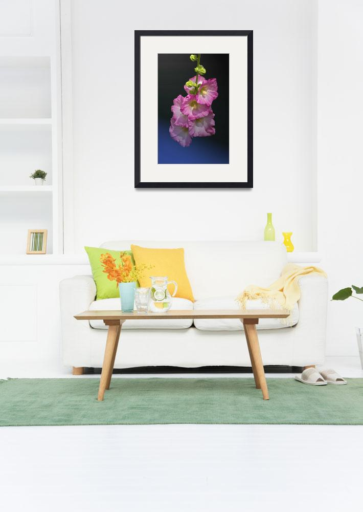 """Columbia Flowers&quot  (2007) by midcenturymodern"