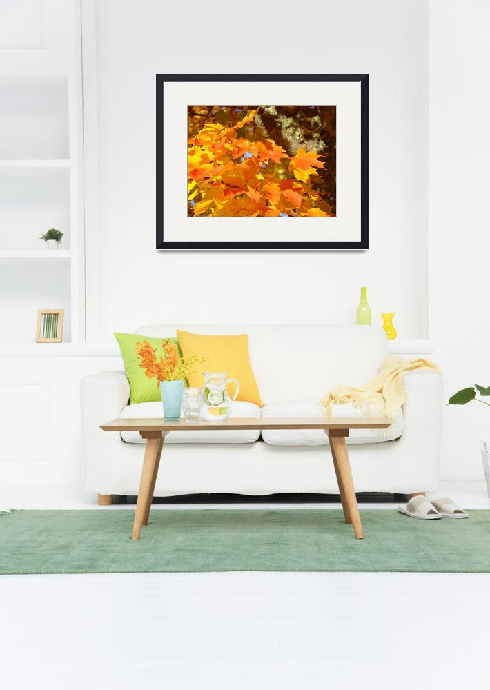 """Orange Autumn Leaves Fall Trees art prints nature&quot  (2013) by BasleeTroutman"