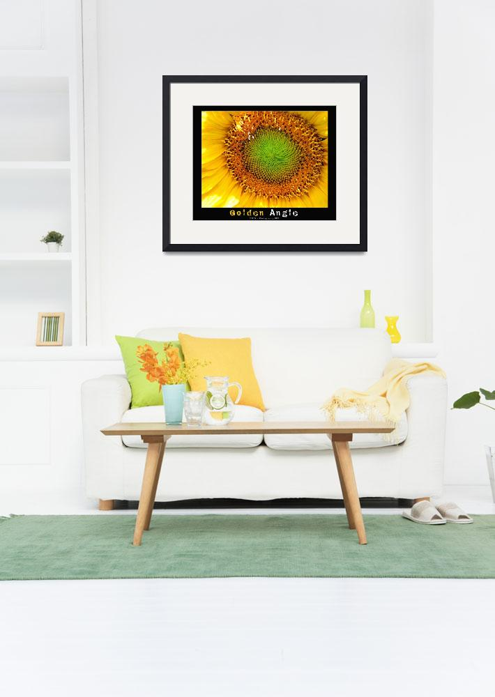 """Sunflower Golden Angle&quot  by tsr"